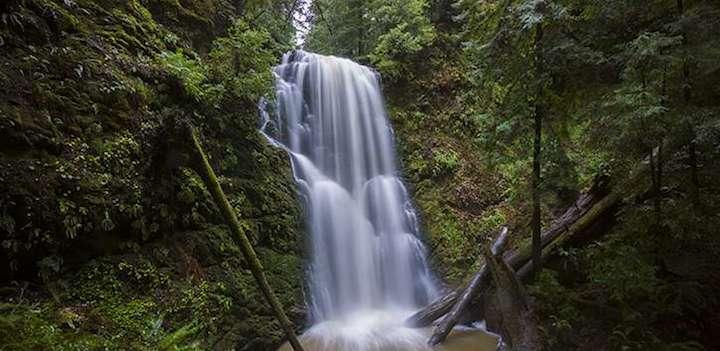 BerryCreek Falls Loop