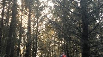Hiking Point Reyes with AventureHacks Team Best Hike In California