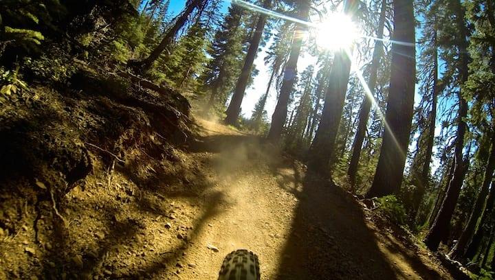 Downieville Mountain Biking