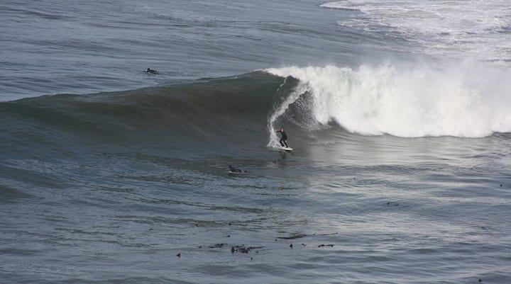 surf north scott creek
