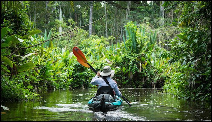Explore Amazon Forest Tour
