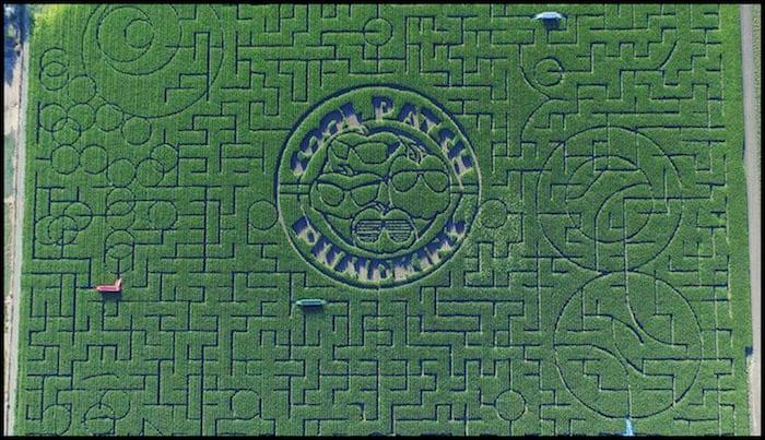 Cool Patch Corn Maze California Fall Adventure