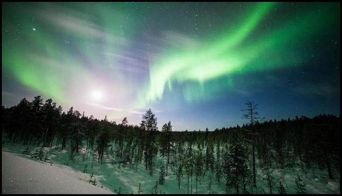 Northern Lights Winter Adventure