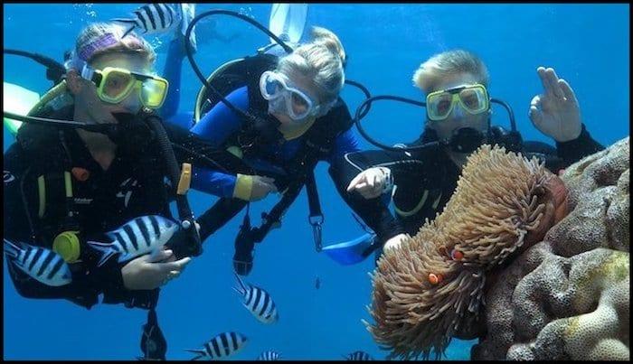 Scuba Dive Barrier Reef