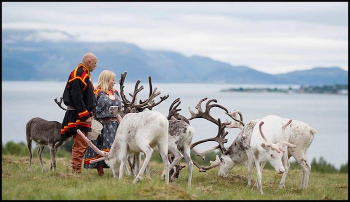 Sami Reindeer Lifestyle Winter Adventure
